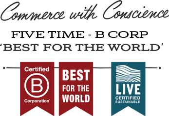 Commerce with Conscience: 5 Time B Corp Best For the World Recipient